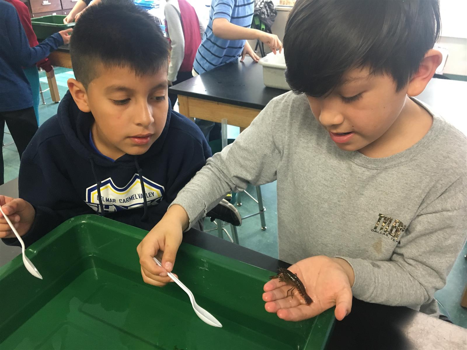 Third Graders Learn About Crayfish